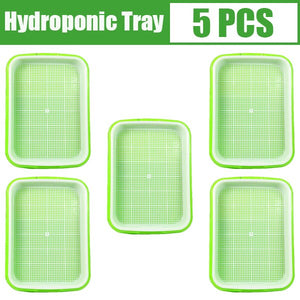 Hydroponics Seed Germination Tray