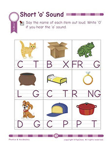 Phonics & Vocabulary: Pre Kindergarten Workbook (Little Genius Series)