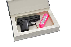 Concealment Book Safe
