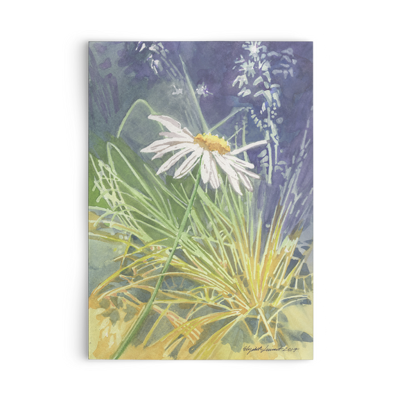 Daisy In the Grass Card