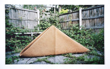 Load image into Gallery viewer, Michael Strasser / Domestic Sculpture Garden