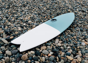 Modern Retro Fish Surfboard