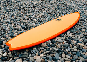 Beginner Fish Surfboard
