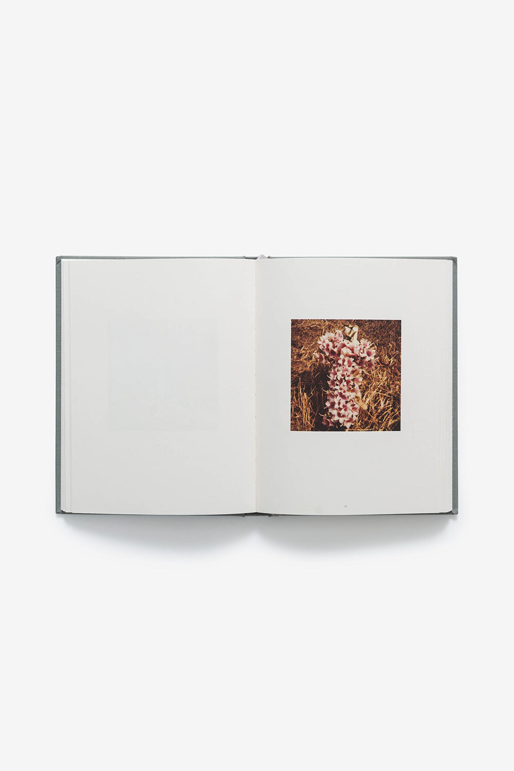 Alabama Chanin Points of Departure Book with Roadside Memorials by Phillip March Jones