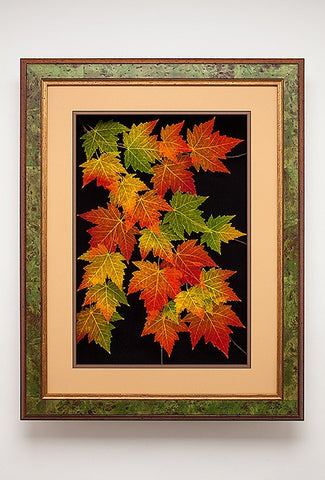 Leaf Lines - Extra Large Red Maple Shadow Box