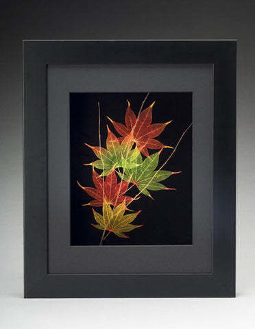 Booker Morey - Leaf Lines - Japanese Maple