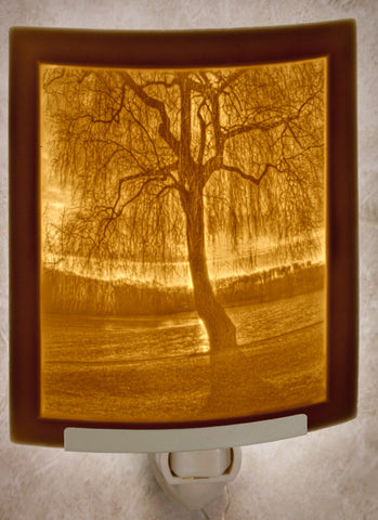 The Porcelain Garden - Willow Sunset - Lithophane Night Light