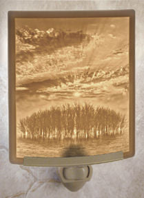 The Porcelain Garden - Sunrise - Lithophane Night Light
