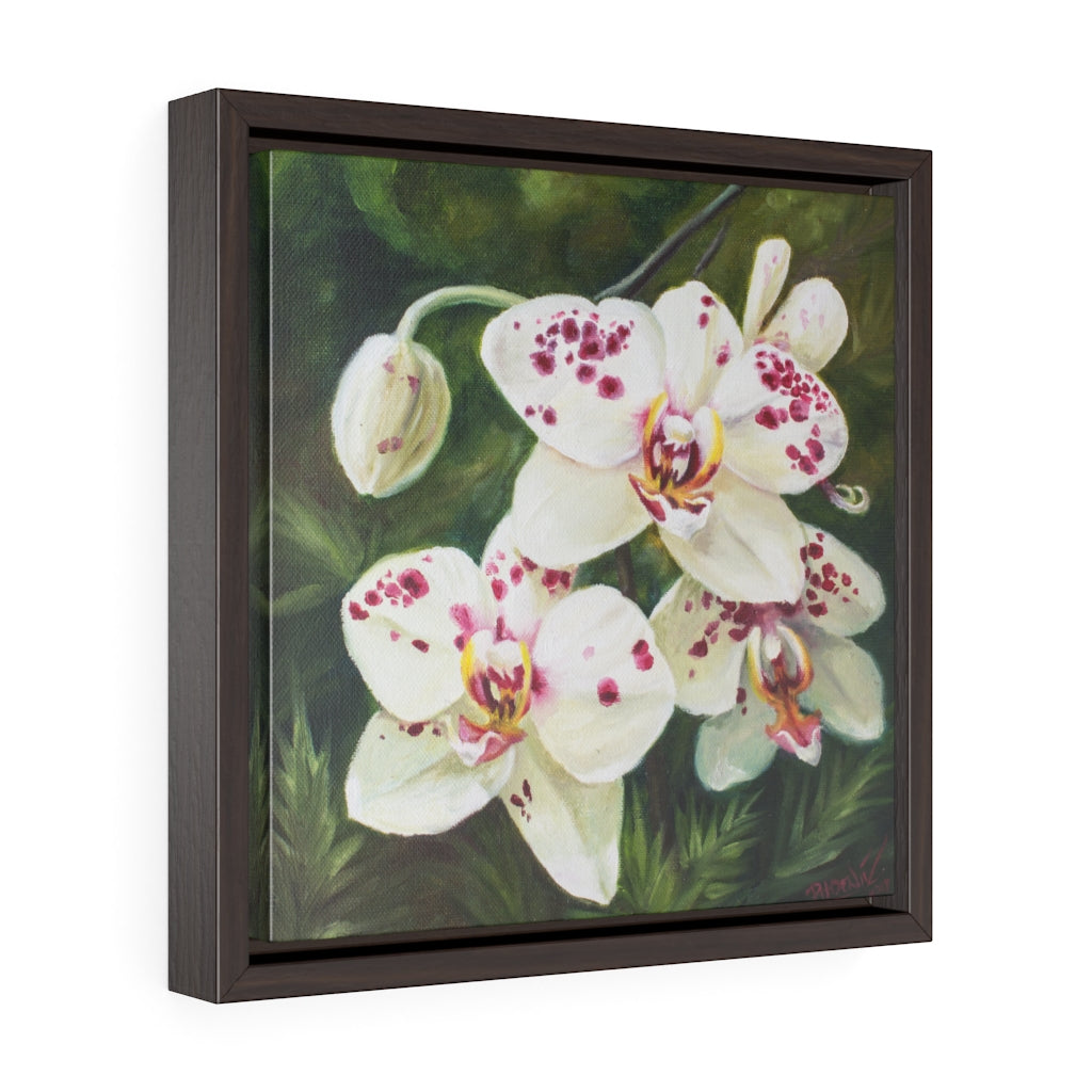 Framed Gallery Wrap - Hawaiian Blooms #2, Phoebe Siemion