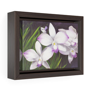 Framed Gallery Wrap - Spray of Delight, Phoebe Siemion
