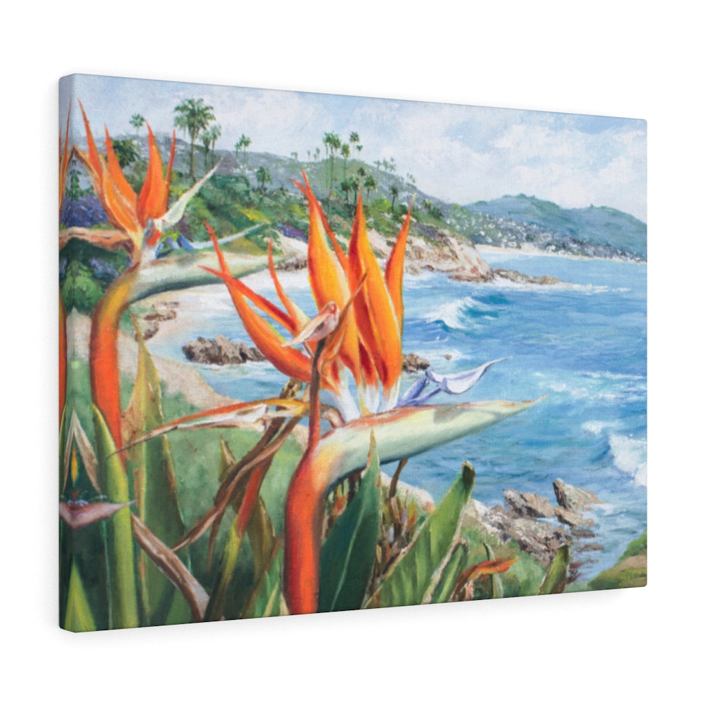 Gallery Wrap - Birds of Laguna, Phoebe Siemion
