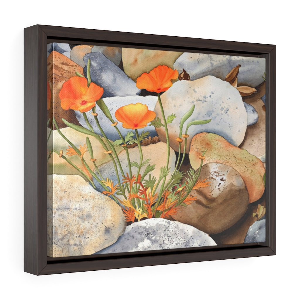 Framed Gallery Wrap - Poppy Pathway, Emilee Reed