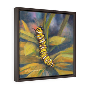 Framed Gallery Wrap - Caterpillar, Terry Houseworth