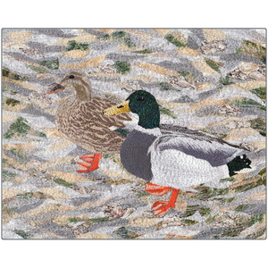 Metal Print - Suburban Wild - Ducks at the Lake, Loretta Alvarado