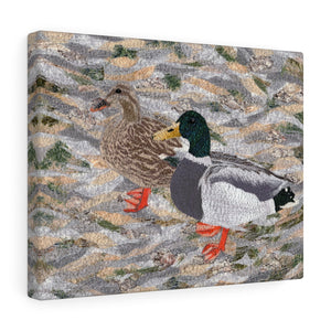 Gallery Wrap - Suburban Wild - Ducks at the Lake, Loretta Alvarado