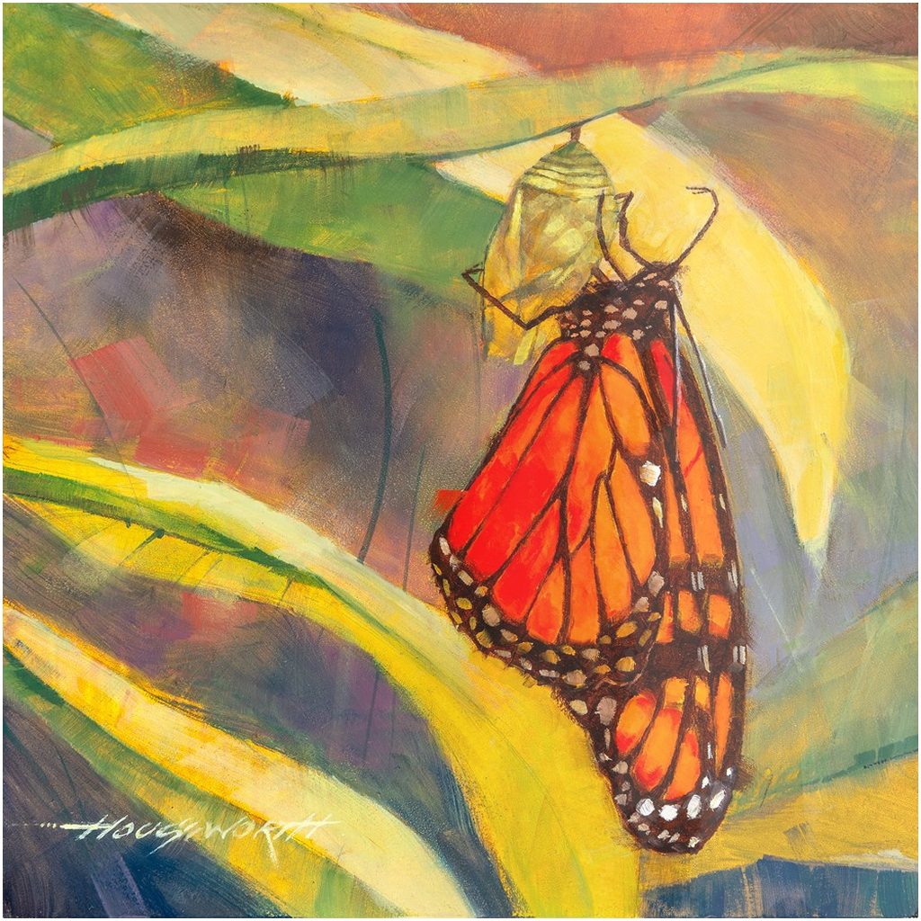 Metal Print - Butterfly, Terry Houseworth