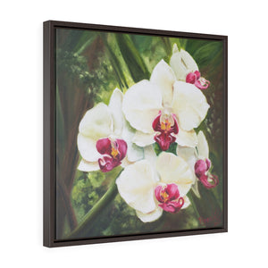 Framed Gallery Wrap - Hawaiian Blooms #3, Phoebe Siemion