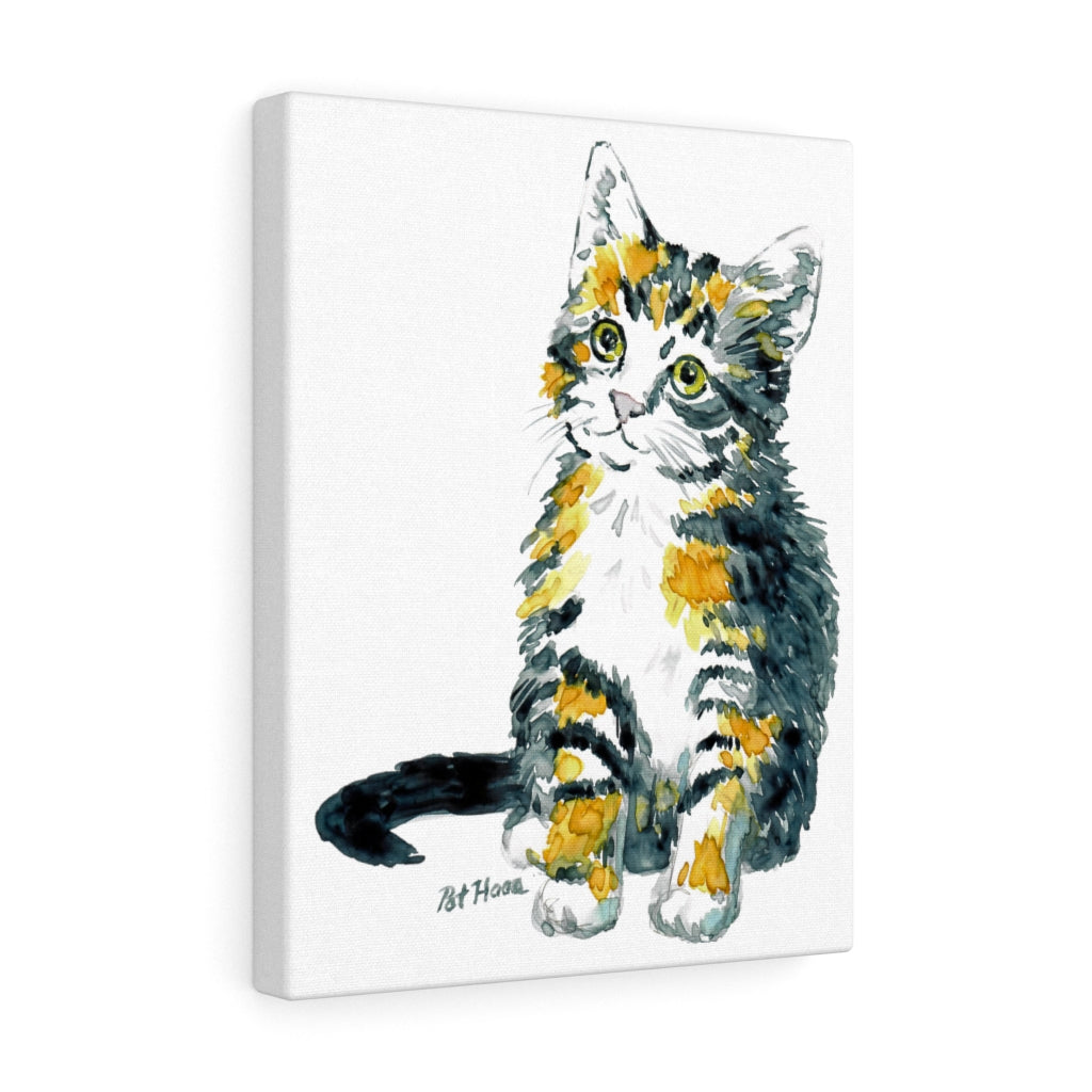 Gallery Wraps - Calico Kitten, Pat Haas