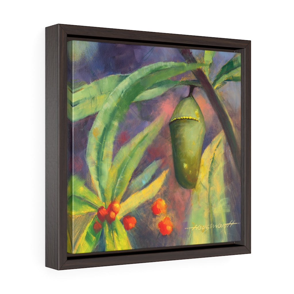 Framed Gallery Wrap - Chrysalis, Terry Houseworth