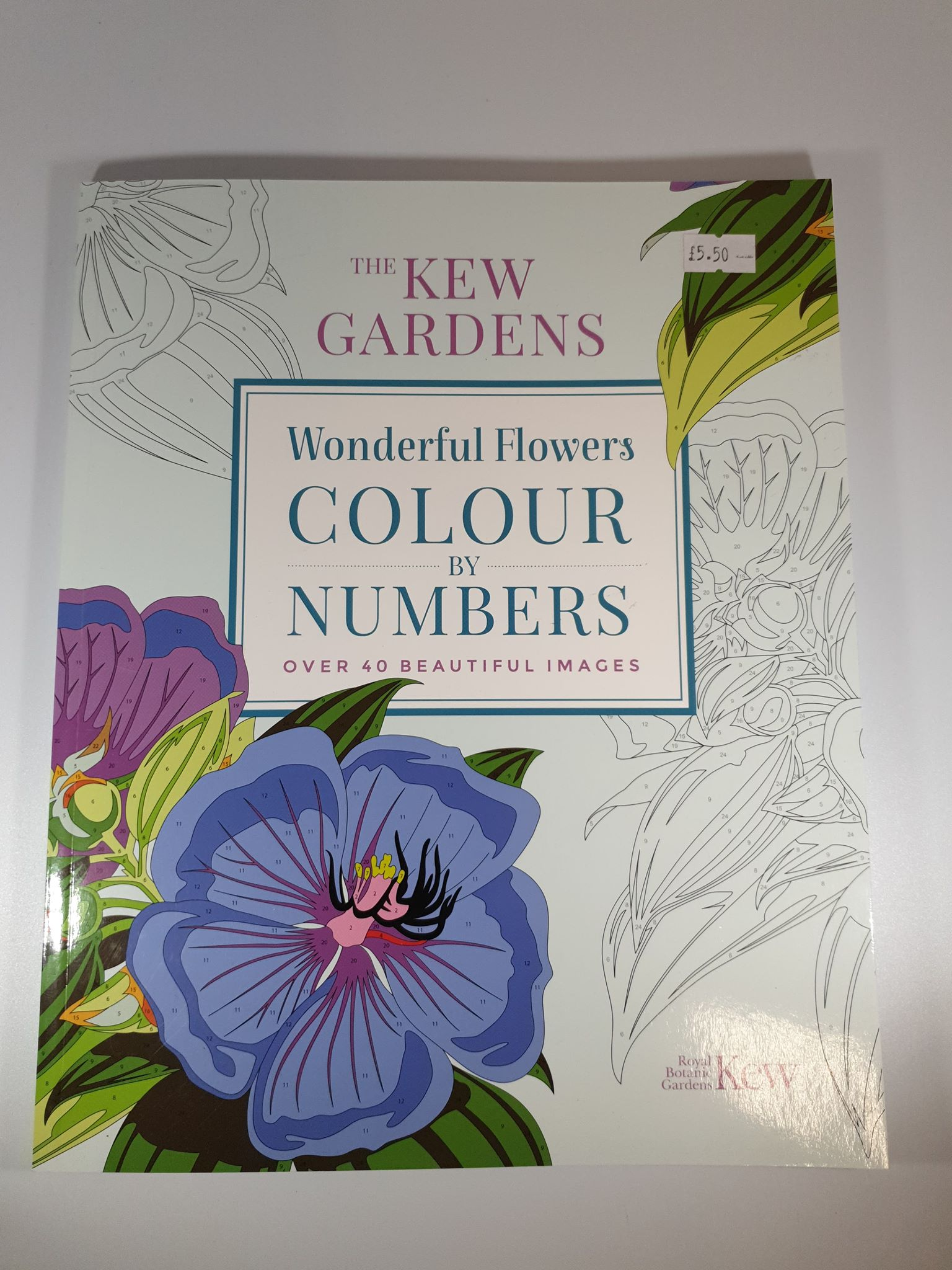 Wonderful Flowers Colour By Numbers