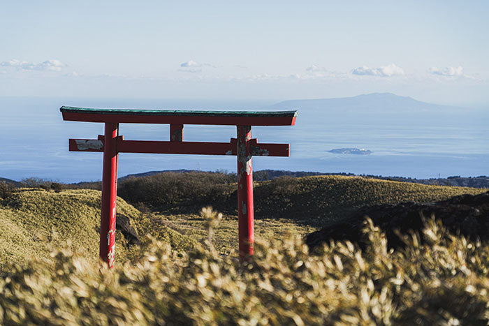 view from the top - the torii gate