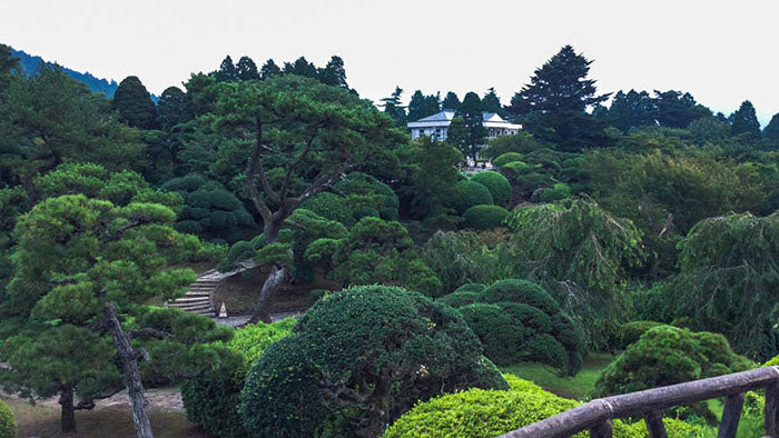 the gardens of the onshi hakone park