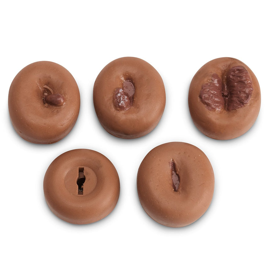 Cervix Set - Set of 5