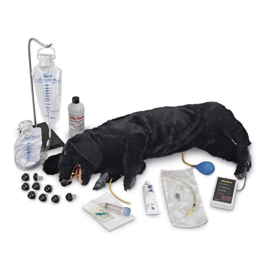 Life/form® Advanced Sanitary CPR Dog