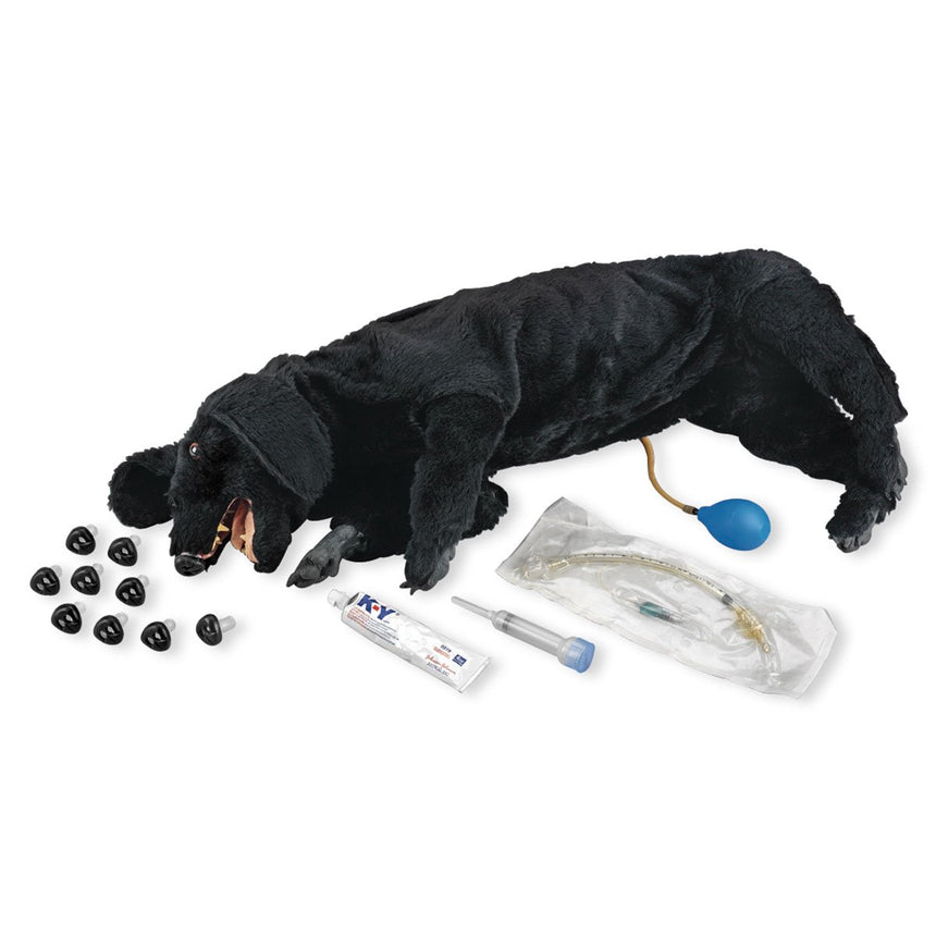 Life/form® Basic Sanitary CPR Dog