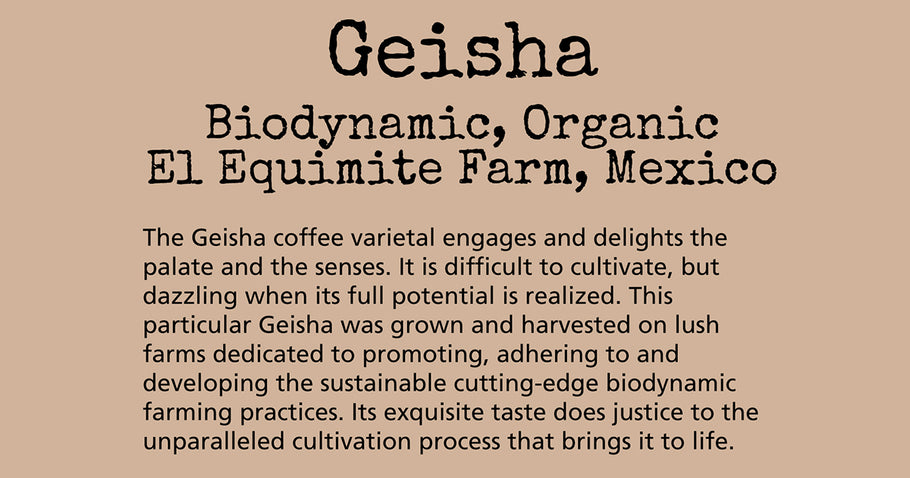 Geisha Coffee: The Varietal that Rocked the Coffee (and Aharon Vaknin's) World