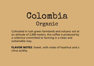 Cultivated in lush green farmlands and volcanic soil at an altitude of 2,000 meters, this coffee is produced by a collective committed to farming in a clean and sustainable way.  FLAVOR NOTES: Sweet, with notes of hazelnut and a citrus acidity.