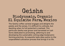Load image into Gallery viewer, The Geisha coffee varietal engages and delights the palate and the senses. It is difficult to cultivate, but dazzling when its full potential is realized. This particular Geisha was grown and harvested on lush farms dedicated to promoting, adhering to and developing the sustainable cutting-edge biodynamic farming practices. Its exquisite taste does justice to the unparalleled cultivation process that brings it to life.