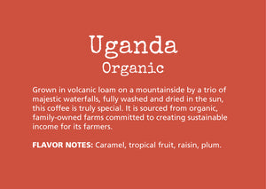 Grown in volcanic loam on a mountainside by a trio of  majestic waterfalls, fully washed and dried in the sun, this coffee is truly special. It is sourced from organic,  family-owned farms committed to creating sustainable income for its farmers.  FLAVOR NOTES: Caramel, tropical fruit, raisin, plum.