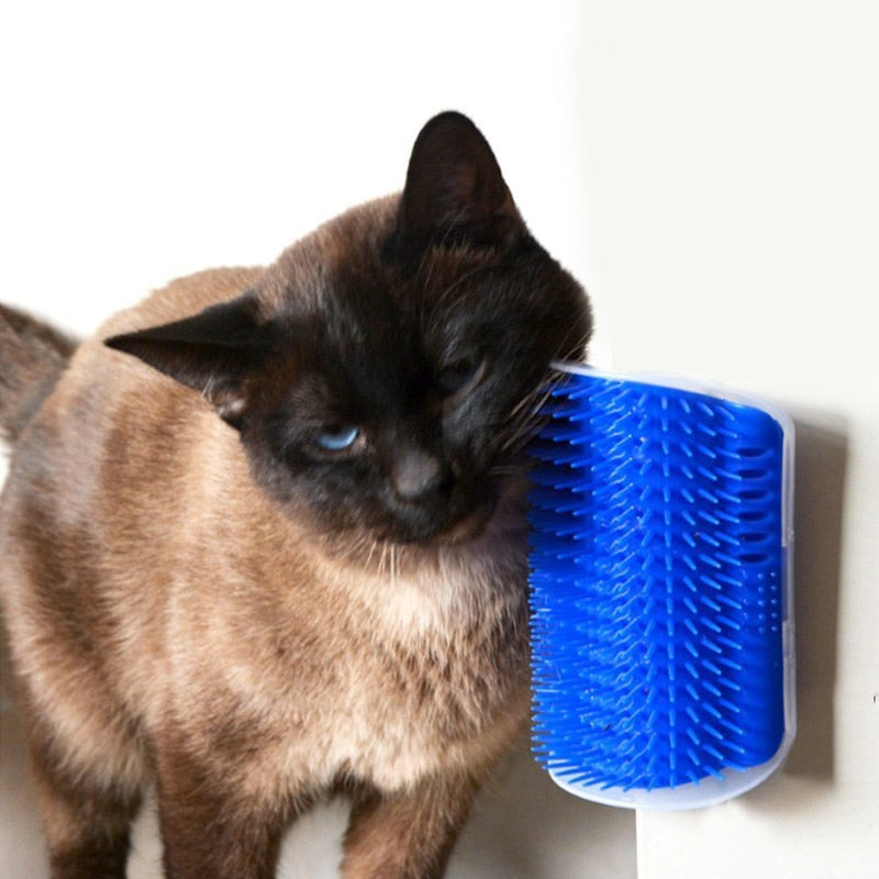 Self-Grooming Cat Scratcher