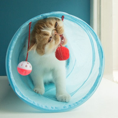 Play Cat Tunnel