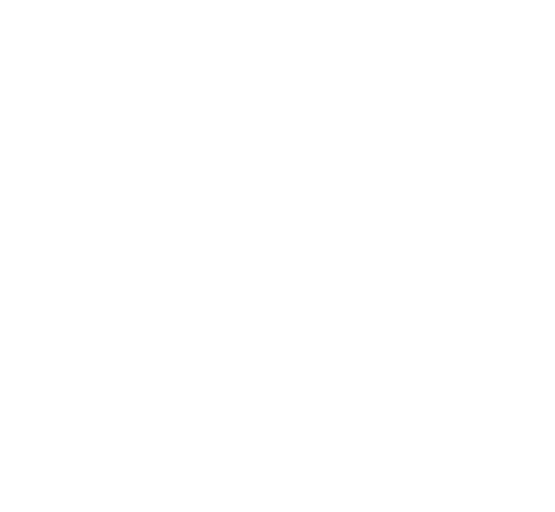 White Mirror logo