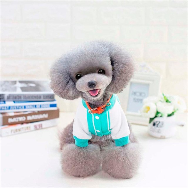 Blue Puppy with Hat pet dog Jacket coat clothes