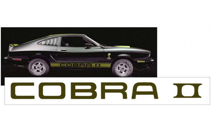 1975-77 Cobra II Spoiler Decal