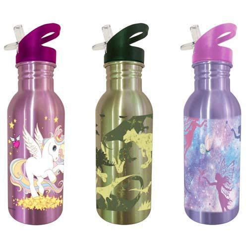 Stainless Steel Bottle Assorted