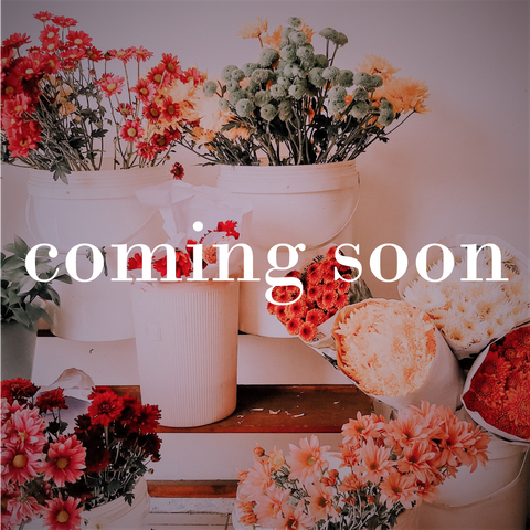 The Nectary - Floral Design Studio - Coming Soon