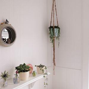 DIY Macramé and Hanging Plant Set - The Nectary - Floral Styling