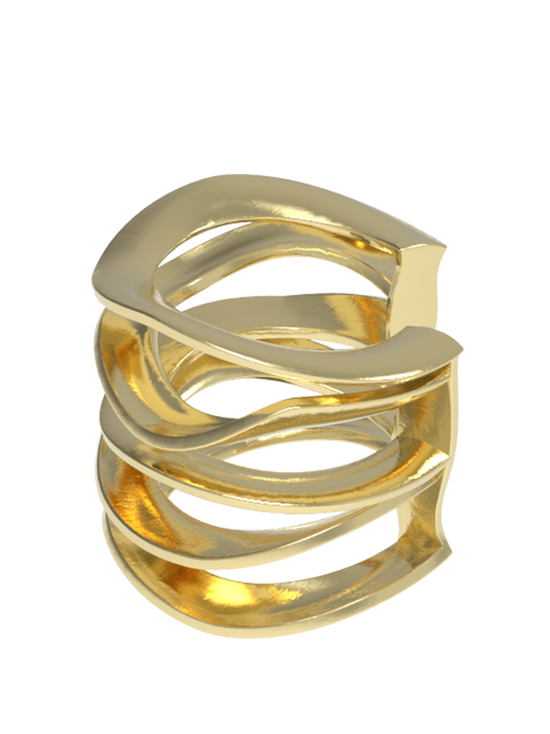 seacoast ring