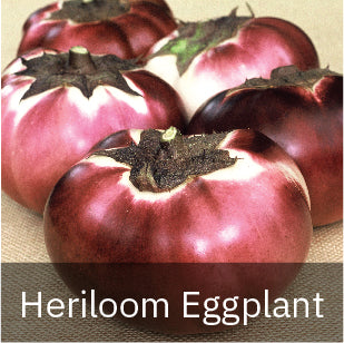 Eggplant - Heirloom