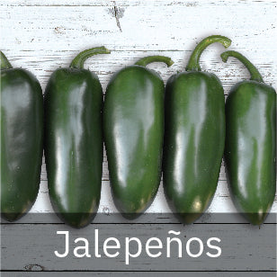 Peppers - Hot Peppers - Jalapeno