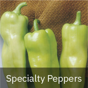 Peppers - Sweet Peppers - Specialty Peppers