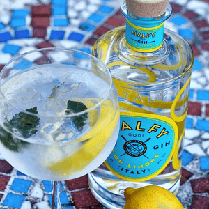 Malfy Con Limone Gin - Ginuniverset