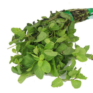 Pudina / Mint Leaves / पुदीना (1 bunch)