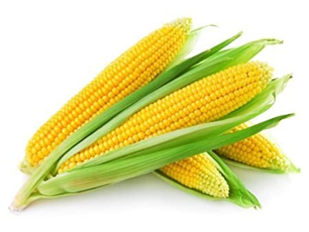 Fresh Sweet Corn / मक्का (1pc)