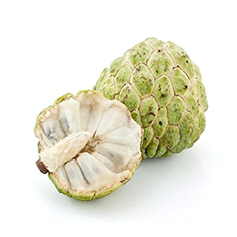Custard Apple - Sitafal - Sharefa (500g)