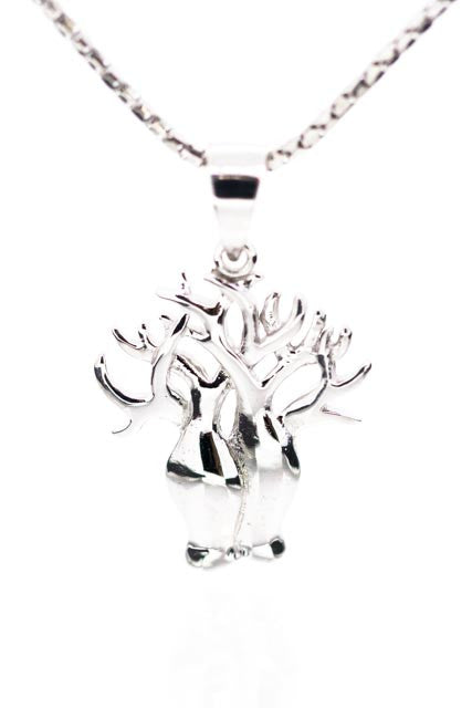 Boab Tree Collection | Stirling Silver